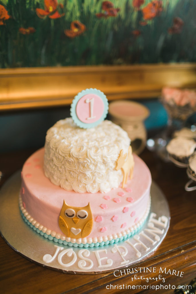 first birthday owl theme darling cake