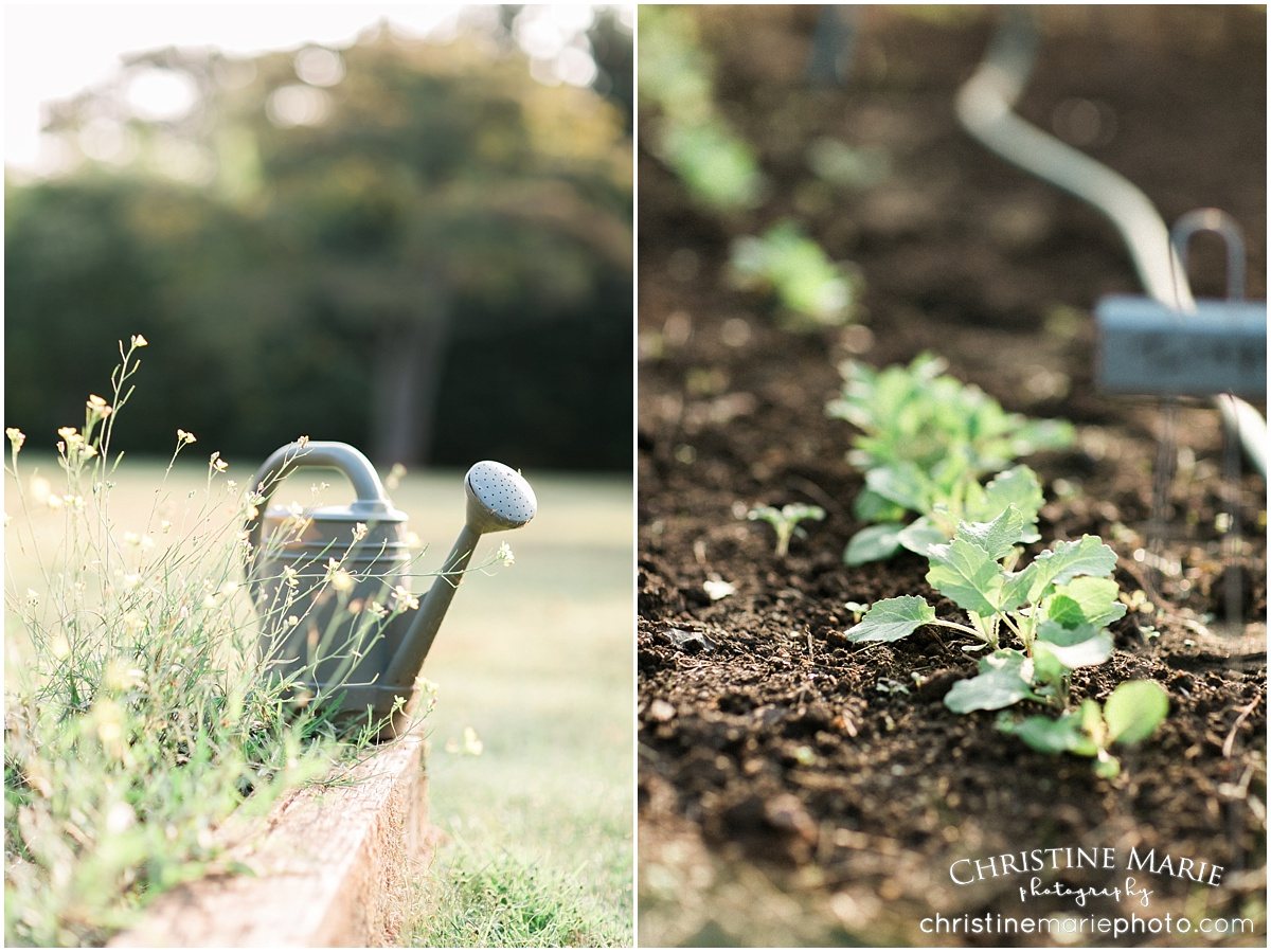 barrington hall garden themed family session